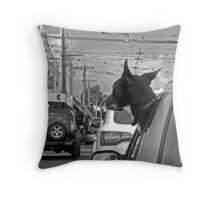 Afternoon traffic reports on WOOF- FM.  Throw Pillow
