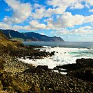 Peaceful paridise of Hawaii by raymona pooler