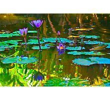 Colorful waters colored flowers Photographic Print