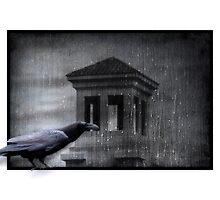 Raven by Yvonne Emerson