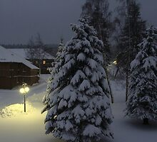 Peaceful Winter Evening by karina5
