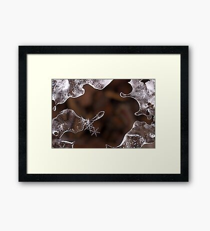 Nature's Ice Sculpture with Snowflake Jewels Framed Print