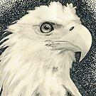 Eagle I by Kashmere1646