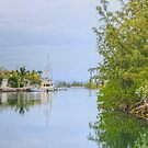 Coral Harbour in Nassau, The Bahamas by 242Digital