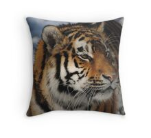 Amur Tiger  Throw Pillow