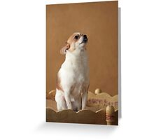 A Bit Camera Shy ~ Greeting Card