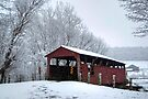 Snow Covered Covered Bridge by Gene Walls