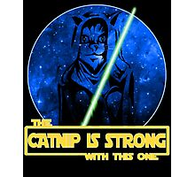 Catnip Is Strong With This One Photographic Print