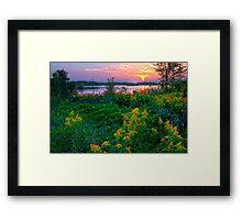 WILD FLOWERS SUMMIT LAKE SEPTEMBER Framed Print