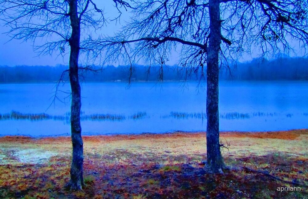 Shoreline of Lake Pickens, Sherman, Texas, USA by aprilann