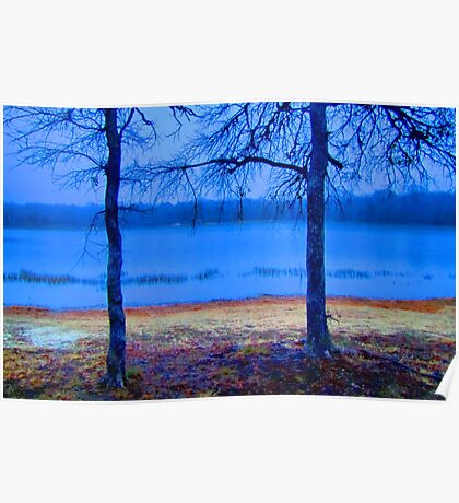 Shoreline of Lake Pickens, Sherman, Texas, USA Poster