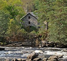 Watermill by Donald  Stewart
