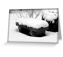 Freshly Fallen Snow © Greeting Card