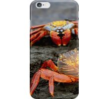 Red Rock Crabs iPhone Case/Skin