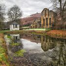 Abbey Reflections by Adrian Evans