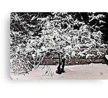 Snow Tree © Canvas Print