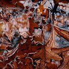 Wet Leaves 1 by Peter Baglia