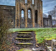 Abbey Steps by Adrian Evans
