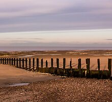 The Old Sea Groynes by Ian Hufton