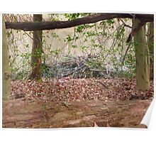 Beaver lodge Poster