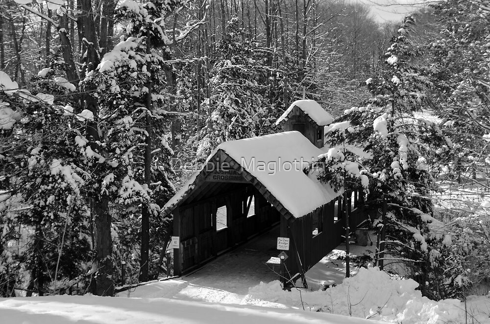 Covered Bridge 2 by Debbie  Maglothin