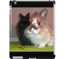 Netherland Dwarf and Lionhead iPad Case/Skin