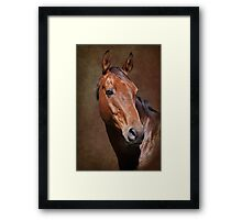 Portrait of Chief Framed Print
