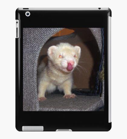 Albino Ferret iPad Case/Skin