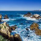 Point Lobos State Park - Sea Lion Point by Yukondick