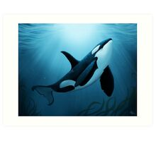 """The Dreamer"" ~ Orca • Killer Whale Art Print"