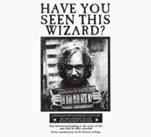 Have You Seen This Wizard? by Fiona Boyle