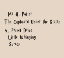 Mr H. Potter by Fiona Boyle