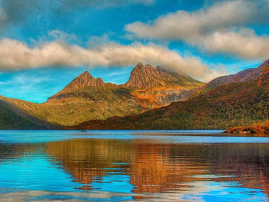 Cradle in Fagus # 2 - Cradle Mountain , Tasmania Australia - The HDR Experience by Philip Johnson