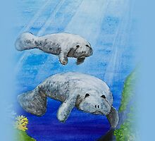 Sea Manatees  by jkartlife