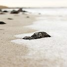 Sand, Snow and Rocks by RaymondJames