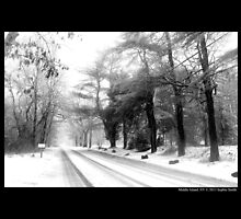 Street In Winter - Middle Island, New York by © Sophie W. Smith