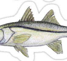 Inshore Slam Watercolor Sticker