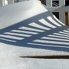 Shadowfence by daniseas