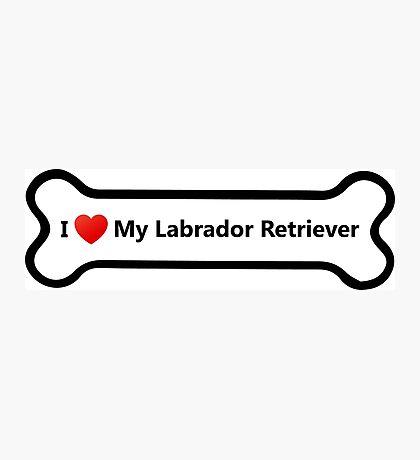 I Love My Labrador Retriever Photographic Print