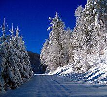 snowy solitude by LoreLeft27