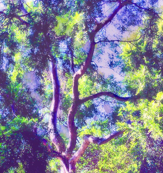 Fauvist Tree With Vibrant Foliage in Light and Shadow—Version One by Ivana Redwine