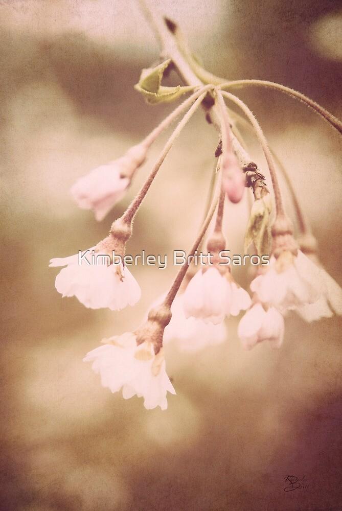 Delicate Spring by KBritt