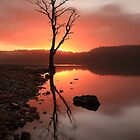 Loch Ard Sunrise  by Grant Glendinning