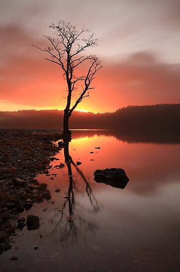 Loch Ard Sunrise  by Photo Scotland