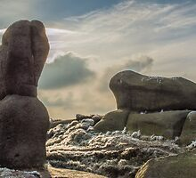 Wool Packs, Rock Formation on Kinder Scout, Derbyshire by Phil Tinkler