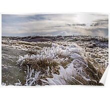 Icy Kinder Scout Poster