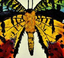 Sunset Moth Unaltered  Sticker