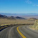 Highway 844, Nevada by Claudio Del Luongo