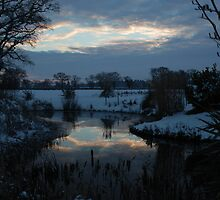 Pond at sunset by Patricia Martin