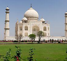 The Taj Mahal in Agra, India. by Alan Gillam